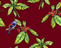Floral pattern with Japanese laurel and a bird. Stock Images