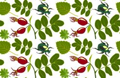 Floral pattern with leaves, rosehip and bugs. Vector illustration, transparent background royalty free illustration