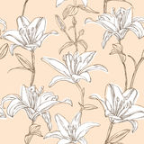 Floral pattern with lily Stock Images