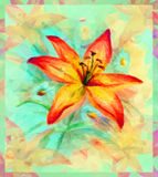 Floral Pattern with Lily Flower Stock Photo