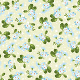 Floral pattern with little blue flowers Stock Image