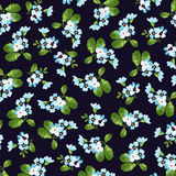 Floral pattern with little blue flowers Royalty Free Stock Photo