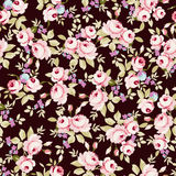 Floral pattern with little pink roses Stock Photography