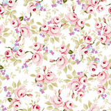 Floral pattern with little pink roses Royalty Free Stock Images