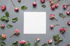 Floral pattern made of pink bush roses, white blank, green leaves on gray background. Flat lay, top view. Valentine`s. Floral pattern made of pink bush roses Royalty Free Stock Photography