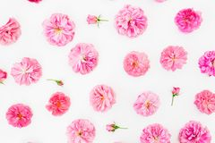 Floral pattern made of pink roses flowers, petals on white background. Flat lay, Top view. Valentines day. Floral pattern made of pink roses flowers, petals on stock images