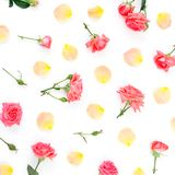 Floral pattern made of red roses flowers and orange rose petals on white background. Flat lay, top view. stock photography