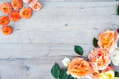 Framework from roses on gray wooden background. Flat lay with copy space. Flowers pattern texture royalty free stock image