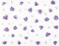 Floral pattern made of spring violet lilac, pansy flowers and lily of the valley isolated on white background. Flat lay. Royalty Free Stock Photo