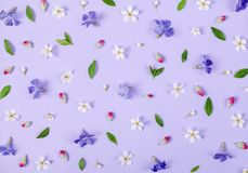 Floral pattern made of spring white and violet flowers, green leaves and pink buds on pastel lilac background. Flat lay