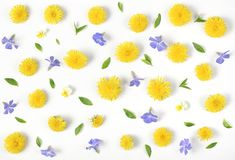 Floral pattern made of yellow dandelion, lilac flowers and leaves isolated on white background. Flat lay. Top view stock image