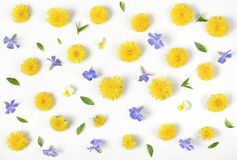 Floral pattern made of yellow dandelion, lilac flowers and leaves isolated on white background. Flat lay. Top view stock photography