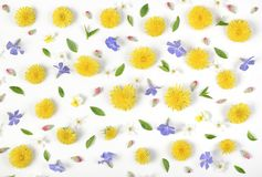 Floral pattern made of yellow dandelion, lilac flowers, pink buds and green leaves isolated on white background. Flat lay. Top view stock image