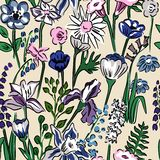 Floral pattern of meadow flowers Stock Images