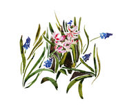 Floral pattern from muscari and hyacinth plants growing on the g Royalty Free Stock Images