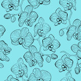 Floral pattern with orchids flowers phalaenopsis background Royalty Free Stock Image