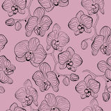 Floral pattern with orchids flowers phalaenopsis background Stock Image