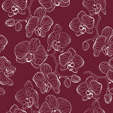 Floral pattern with orchids flowers phalaenopsis background Royalty Free Stock Photos