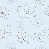 Floral pattern with orchids. Floral seamless pattern with orchids. Vector background Stock Image