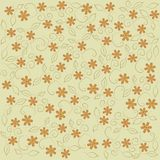 Floral pattern, pattern on a beige background orange flowers, carnation, leaves, khaki, black outline, line, vintage Stock Photos