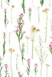 Floral pattern with pink and beige wildflowers, green leaves, branches Stock Photos