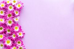 Floral pattern with pink flowers on purple background top view copyspace Stock Photos