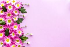 Floral pattern with pink flowers and leaves on purple background top view copyspace Royalty Free Stock Image