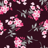 Floral pattern with pink flowers Royalty Free Stock Photography
