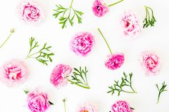 Floral pattern with pink roses flowers white background. Flat lay, Top view. Flowers texture. Royalty Free Stock Photography