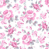 Floral pattern with pink roses Stock Images