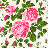 Floral pattern with pink roses. Vector Floral Background. Easy to edit. Perfect for invitations or announcements. Stock Photography