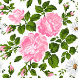 Floral pattern with pink roses. Vector Floral Background. Easy to edit. Perfect for invitations or announcements. Stock Photo
