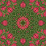 Floral pattern with pomegranates. Royalty Free Stock Images