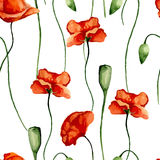 Floral pattern. Poppies Stock Photography