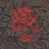 Floral Pattern with red Flower Rose Royalty Free Stock Image