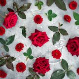 Floral pattern of red roses and chrysanthemums flowers with leaves on dark background. Flat lay, top view. Royalty Free Stock Image
