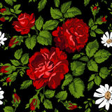 Floral pattern with red roses. Vector Floral Background. Easy to edit. Perfect for invitations or announcements. Royalty Free Stock Image