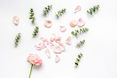 Floral pattern with rose petals and eucalyptus on white table top view Stock Photography