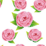 Floral pattern with rose Royalty Free Stock Images