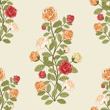 Floral pattern with roses Royalty Free Stock Photography