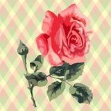 Floral  pattern (roses), fabric tartan. Stock Photos