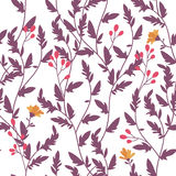 Floral pattern. Royalty Free Stock Image