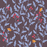 Floral pattern. Seamless vector floral pattern with branches and berries Royalty Free Stock Image