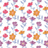 Floral pattern. Stock Photography