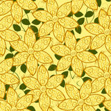 Floral pattern Stock Images
