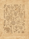Floral pattern sketch for your design Royalty Free Stock Photography