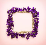 Floral pattern square Frame made of small forest flowers violet with empty space for text on a  on pink background Royalty Free Stock Image