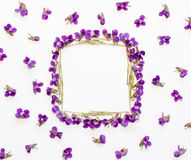 Floral pattern square Frame made of small forest flowers violet with empty space for text on a  on white background Stock Images