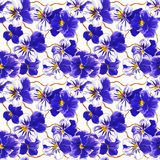 Floral pattern texture background with blue pansy flowers Royalty Free Stock Photography