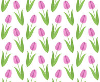 Floral pattern. Tulip Stock Photos